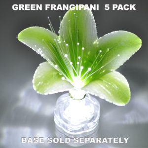 Green Frangipani 5 pack