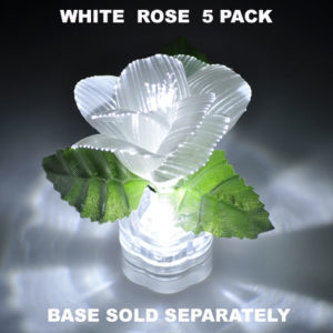 White Rose 5 pack