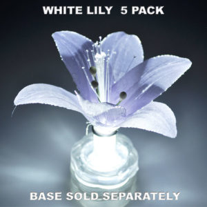 White Lily 5 pack