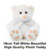 White Plush 18cm tall teddy