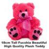 Fucshia Plush 18cm tall teddy