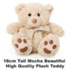 Mocha Plush 18cm tall teddy