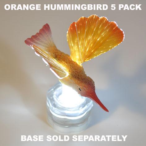 Orange Hummingbird 5 pack